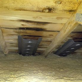 Insulation and underside of roof
